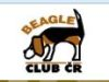 logo beagleclub czechia